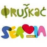Языковой лагерь в Fruska Gora